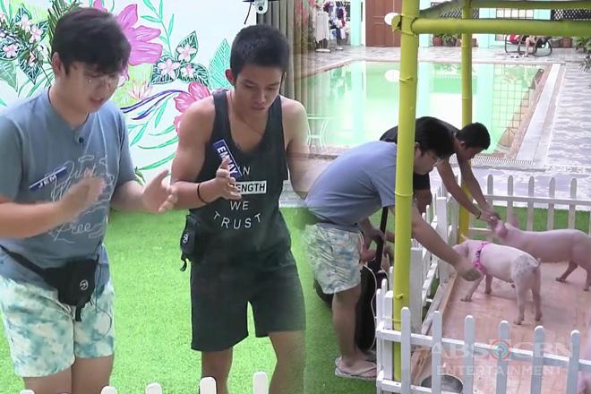 PBB Otso Teens Day 21: Jem at Emjay, ginawan ng kanta ang mga baby pigs